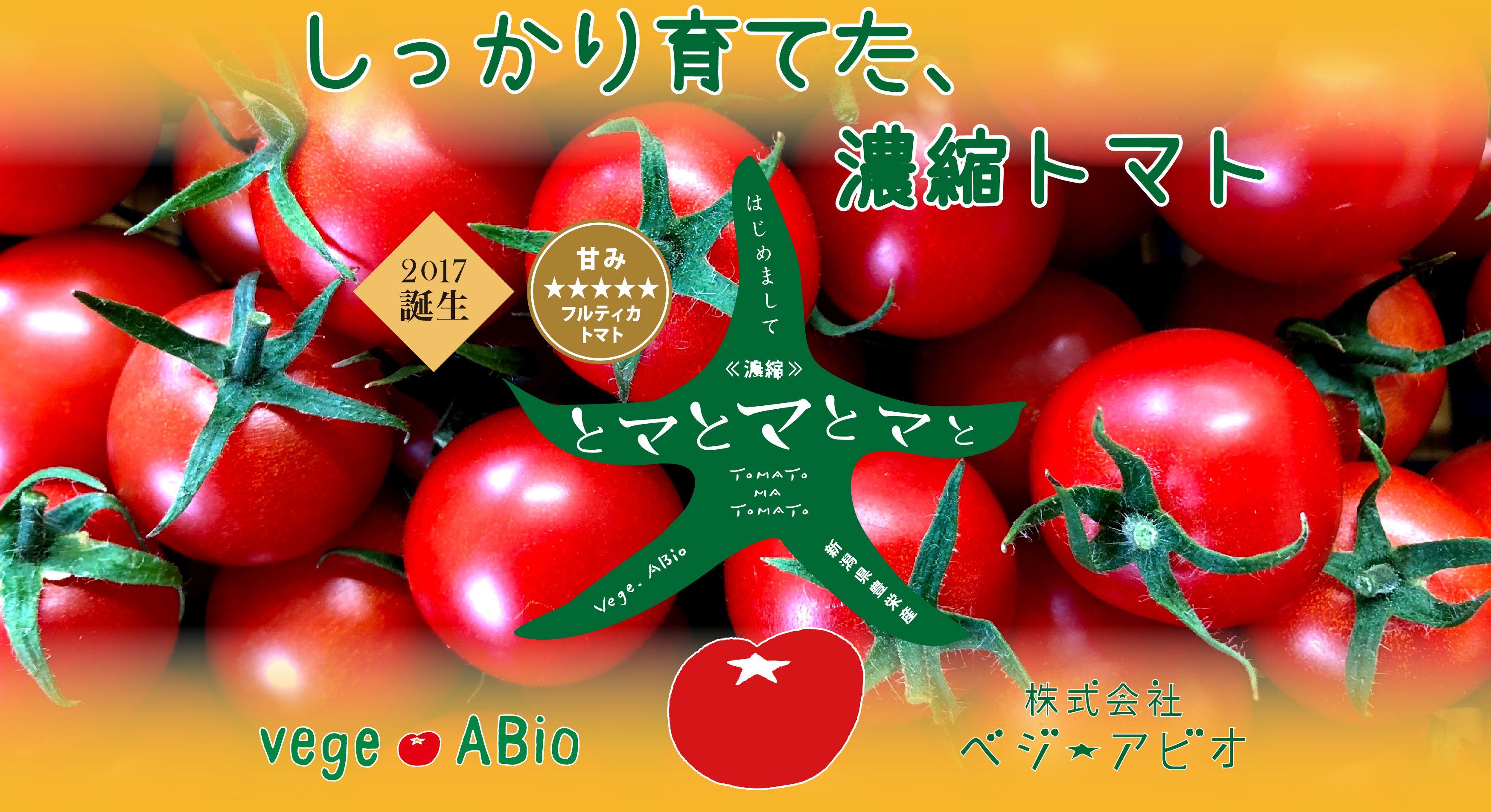 私たちは新潟市北区でフルーツトマトの生産を行う農地所有適格法人です。